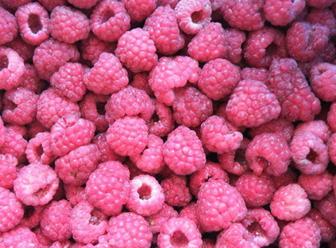 long8国际官方网站树莓